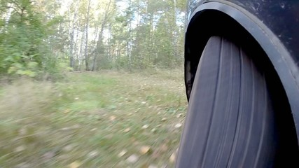 The car is set in the woods.