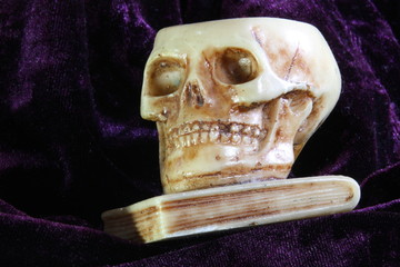 human skull above a school book