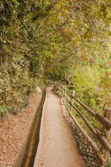Algund, Dorf, Meran, Waalweg, Herbst, Südtirol, Italien