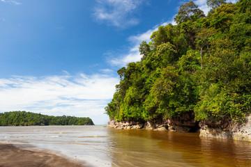 Dense jungle beach and blue sky