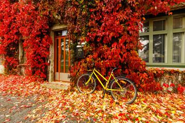 Yellow bicycle.
