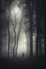 man walking in mysterious dark forest