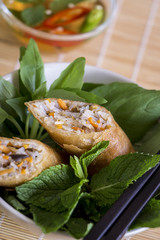 Delicious spring roll appetizer