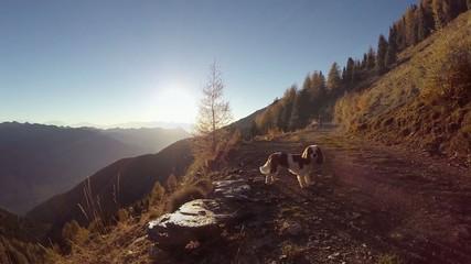 gita in montagna al tramonto