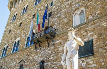 David statue in piazza Signoria in Florence