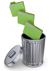 Folder in the Trash - 3D