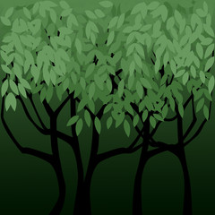 In The Shadow Of Trees Background