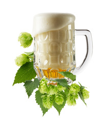 Mug fresh beer with Green hops isolated on the white background