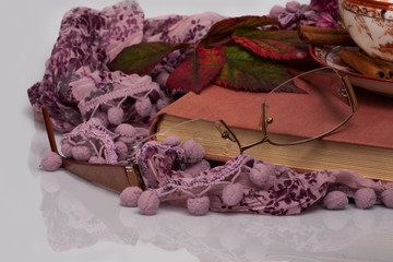 pink book left on scarf with glassed and autumn leaves