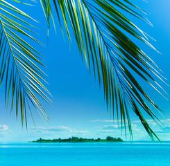 Resort Heaven Concept