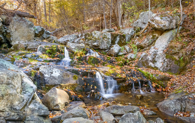 Forest stream on the Blue Ridge Parkway