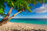 Fototapety Rest in Paradise - Malediven - Palmen am Strand