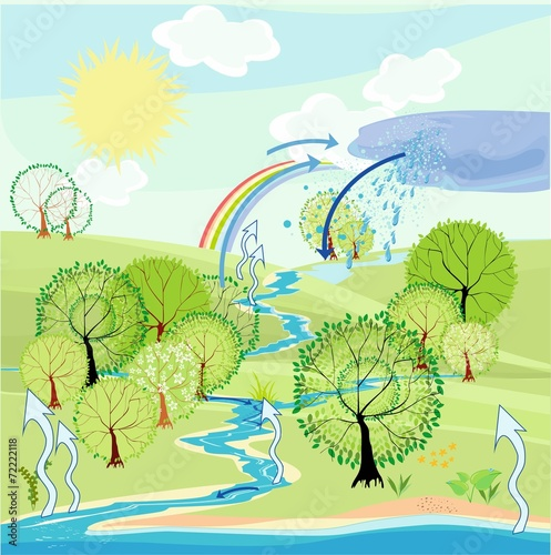 Water cycle in nature - 72222118