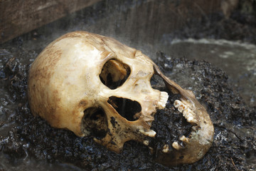 Genuine human skull figured as crime scene, very narrow focus