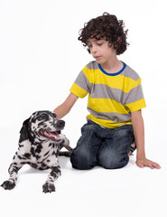 Child petting a dalamatian dog white background