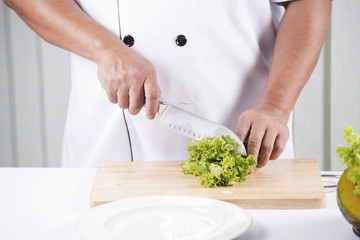 Chef's hands cutting lettuce