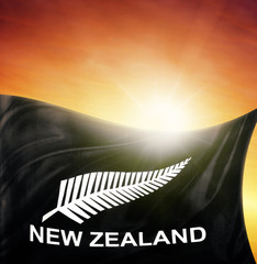 Silver fern flag and sky