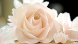 roses flower wedding background