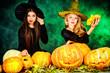 a lot of pumpkins