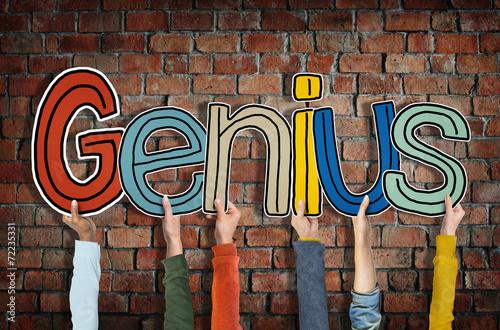 essays on the word genius