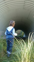 Neugieriges Kind schaut in die röhre