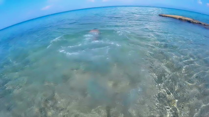 Diving in the exotic seas