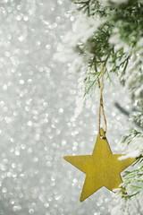 Christmas star.