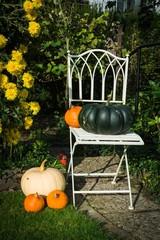 Stuhl mit Kürbissen dekoriert