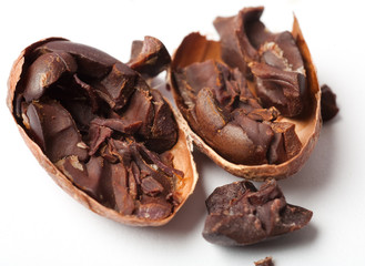 Raw cocoa beans. Studio shot. White background.