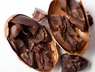 Raw cocoa beans. Studio shot. White background.