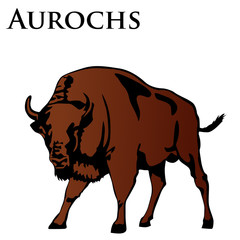 brown aurochs vector illustration