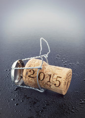 Champagnerkorken 2015 - 2