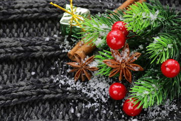 Christmas warm knitted background with fir tree and spices