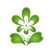Green flower isolated on white background. Logo. Protection of t