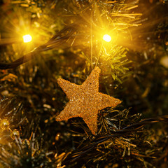 gold star in lights, christmas decorations and fir branch
