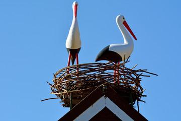 Two European white stork