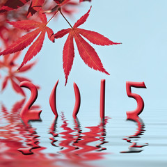 2015, red maple tree leaves and water reflections