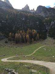 strada alpina