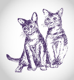 Sketch cat and tomcat illustration poster