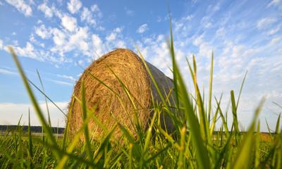Heurolle im Gras