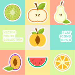 Vector fruit icon