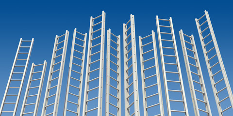 Corporate Ladders