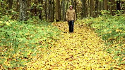 Man walking at autumnal park on yellow leaves