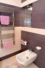 Bathroom interior fragment with the sanitary equipment
