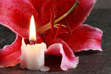 Lilienblüte und Kerze