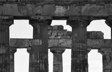 Italy, Sicily, Selinunte, Greek Hera Temple columns (409 b.C.)