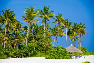 Beach on the Maldives Island
