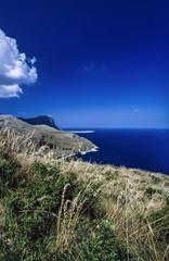 Italy, Sicily, view of the sicilian rocky coastline
