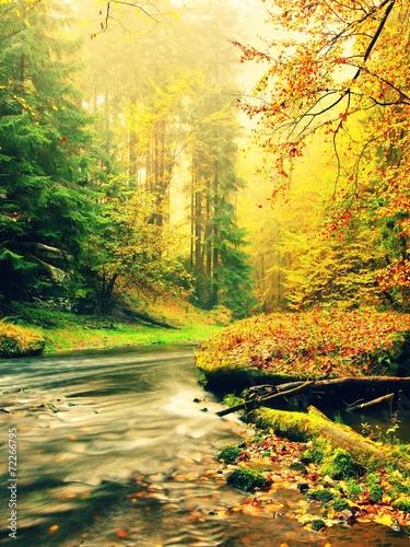 Leinwanddruck Bild Autumn river.
