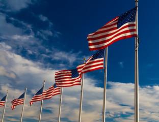Row American Flags, Washington DC,USA